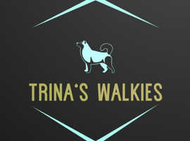 Need a Dog Walker in Bristol??