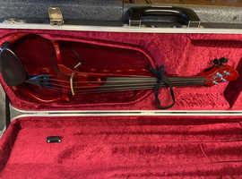 Unique electric violin