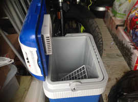 Electric cooler/heater box