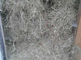 Small bales of fresh hay £1.25