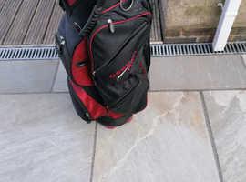 Wilson Golf bag.
