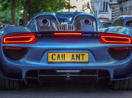 WANTED CA11ANT NUMBER PLATE