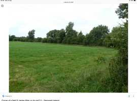 Horse paddocks to rent