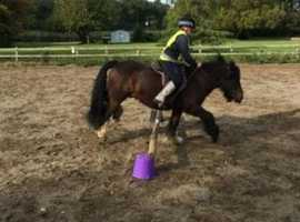Rider to Share/Loan Saxmudham area
