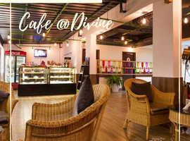 Best restaurants in Rishikesh   Divine Resort