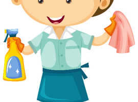 Domestic Cleaner Required - Topcliffe Area