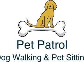 LOCAL DOG WALKING & PET SITTING SERVICE