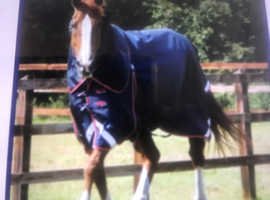 Premier Equine Buster 50g turnout rug with neck