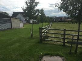 Dog boarding in Woodmancote, Cheltenham
