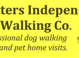 Trotters Independent Dog Walking Co. offers a professional dog walking service and pet home visits.