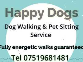Happy Dogs  - Dog Walking Service