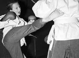One whole week of free martial art lessons