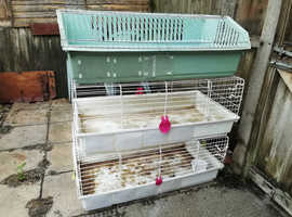 Various Indoor cages for sale