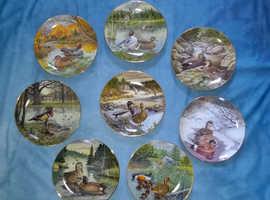 set of 8 vintage hanging plates - Living with Nature - Jerner's Ducks