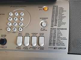 Electronic keyboard E313