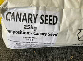 25kg Canary Seed