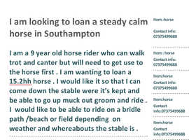 Horse Wanted for loan in Southampton 15.2hh