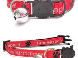 Worded Cat Collars