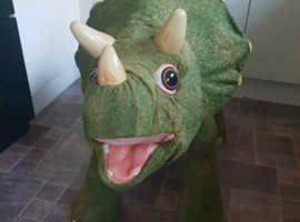 Kota sit on dinosaur