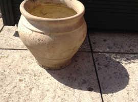 Patio plant pot