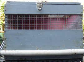 PET TRANSPORT BOX POULTRY PIGEONS FERRETS etc.