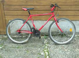Vintage retro Giant mountain bike