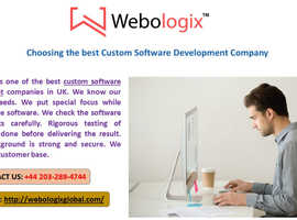 Choosing the best Custom Software Development Company