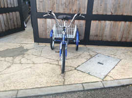 Kentex Classic Trike