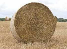Hay Bales Round