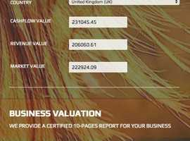 FREE BUSINESS VALUATION ONLINE WEBSITE FOR SALE