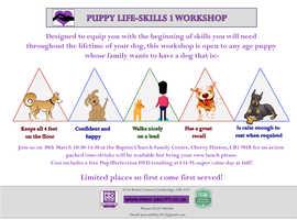 Puppy Life Skills Workshop