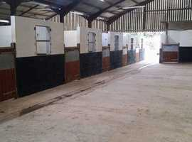 livery yards to let in west sussex