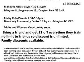 Martial arts Islington learn Karate Taekwondo Kickboxing self defence for kids