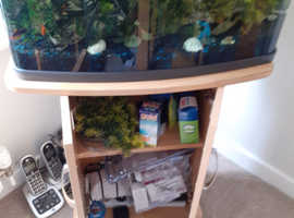Fish tank and all you see