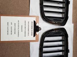 BMW Kidney Grills