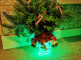 Christmas bottle lights with real foliage for sale