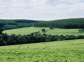 LAND WANTED!! 1 to 2 ACRES APPROX. Will pay £15,000 South West England