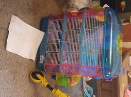 hamster  8 weeks old with cage and lots of toys