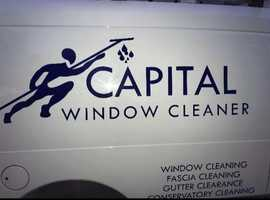 Capital window cleaner