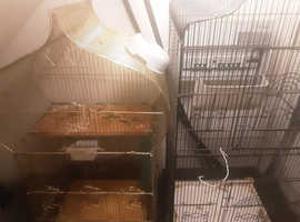 2 bird cages £20 each