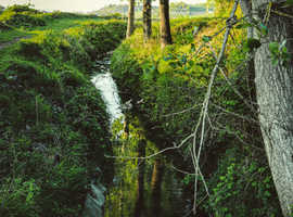 ***Seeking rural, secluded home!***