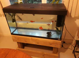 Fluval 3 foot fish tank and stand