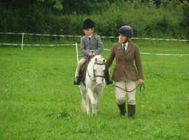 Lead rein/First ridden pony