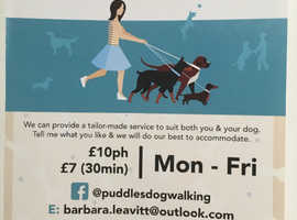 Puddles Dog Walking Services