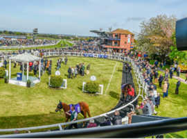 Beverley Races Ladies Day 11th August Tickets