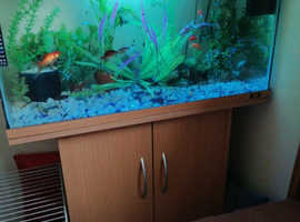 Fishtank  jewel rio 125