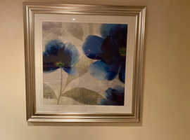 Two large poppy picture