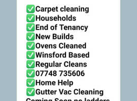 Carpet cleaner. General house cleaning services. Also Gutter Vac