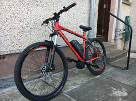Electric mountain bike ebike