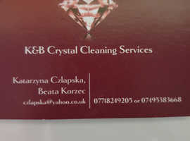Cleaner,cleaning company